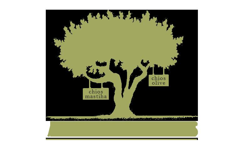 Adopt Chios Mastiha And Olive Trees